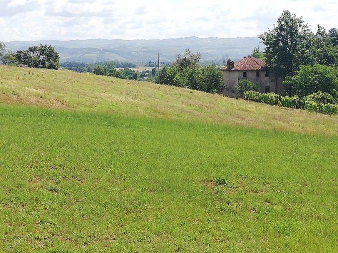 B02/20 – Bene Vagienna – Complesso rurale e terreno agricolo